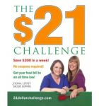 $21 challenge book cover