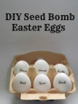 seedbomb easter eggs