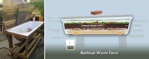 bath-worm-farm